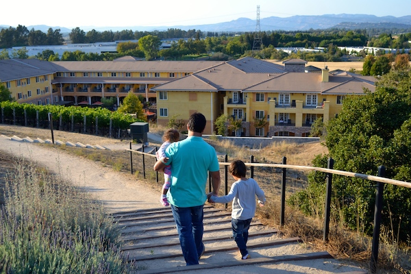 Our Wonderful Napa Valley Summer Vacation