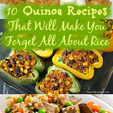 10 Quinoa Recipes That Will Make You Forget All About Rice