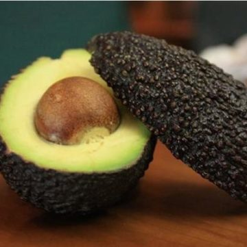 hard avocado