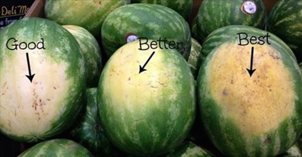 5 Clever Tips To Help You Pick The Perfect Watermelon