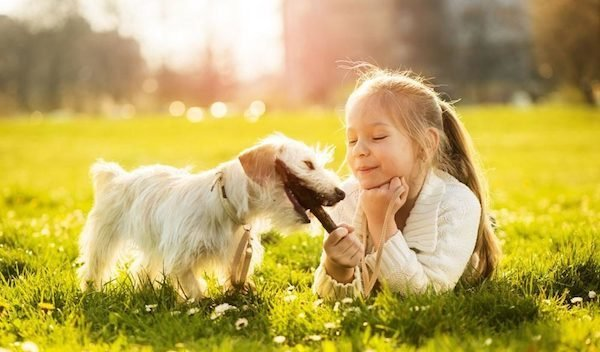 Children growing up with dogs less likely to suffer mental health issues