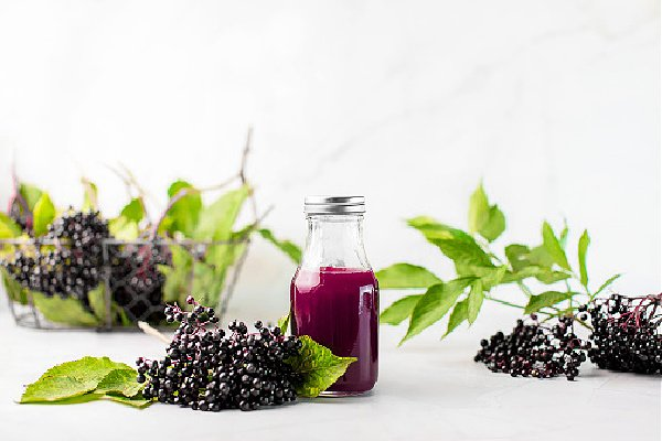 Elderberry syrup in a bottle, front view of ready to take-in syrup with raw ripe elderberrie