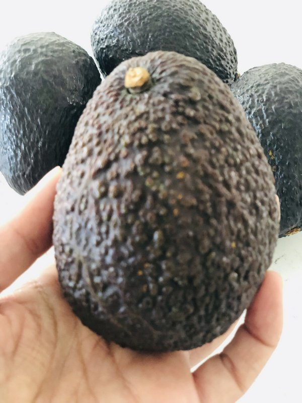 ripe avocado ready