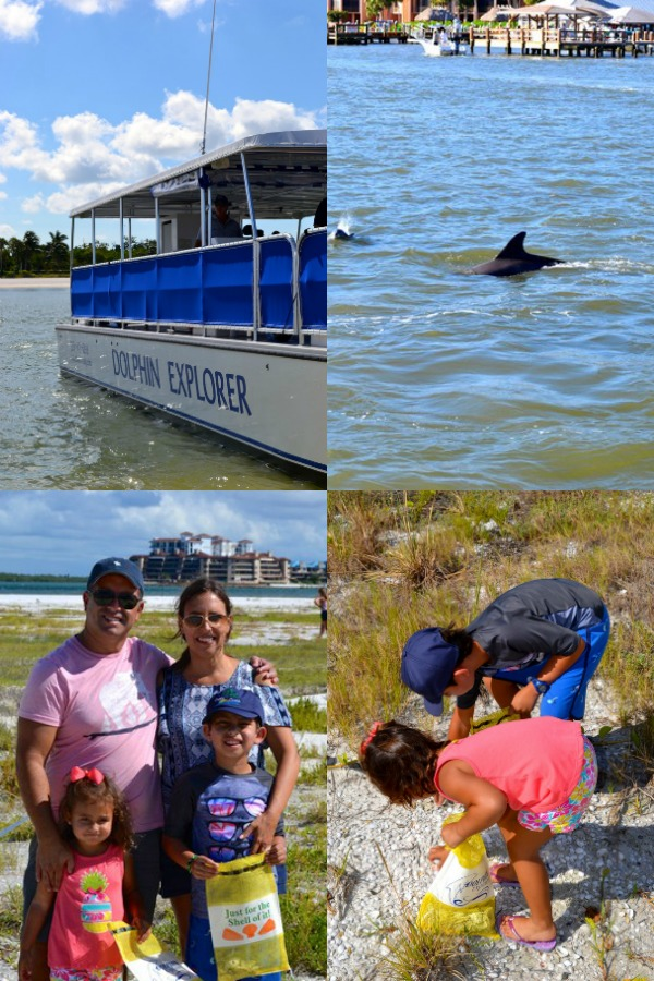 The Dolphin Explorer Tour and Cruise