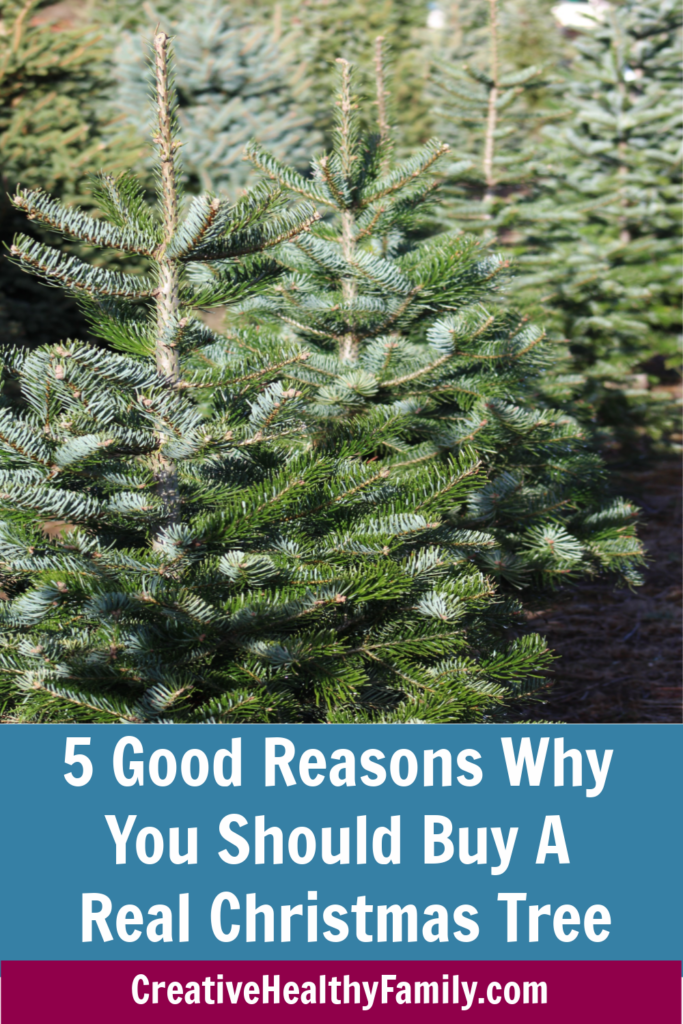 reasons to buy a real tree