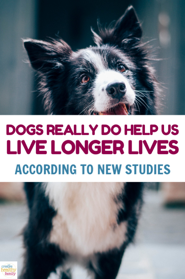 If you're looking for a reason to buy your kids a dog, here's one that's hard to ignore! Dogs really do help us live longer, new studies prove!