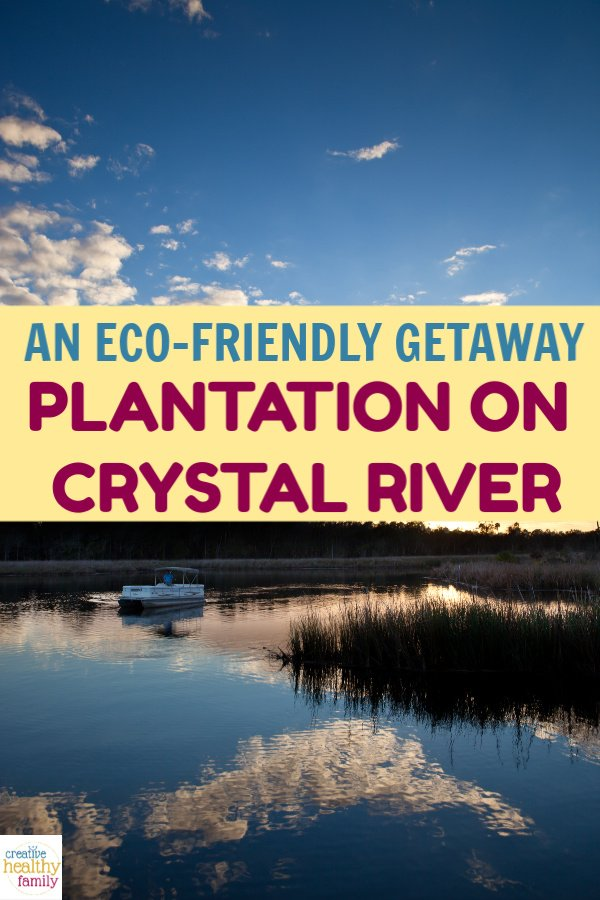 Take a weekend family getaway to a place that's as eco-friendly as it is beautiful! Check out all that the Plantation at Crystal River has to offer.
