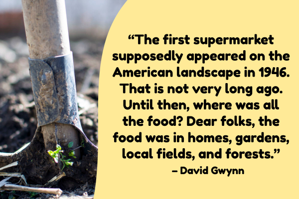 """The first supermarket supposedly appeared on the American landscape in 1946. That is not very long ago. Until then, where was all the food? Dear folks, the food was in homes, gardens, local fields, and forests."" – David Gwynn"