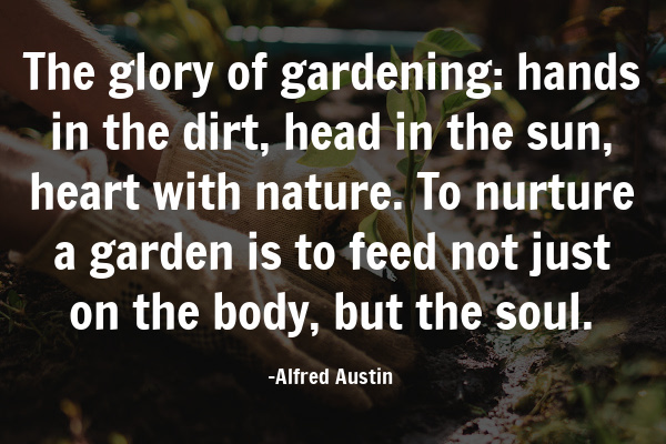 quote about the glory of a backyard garden