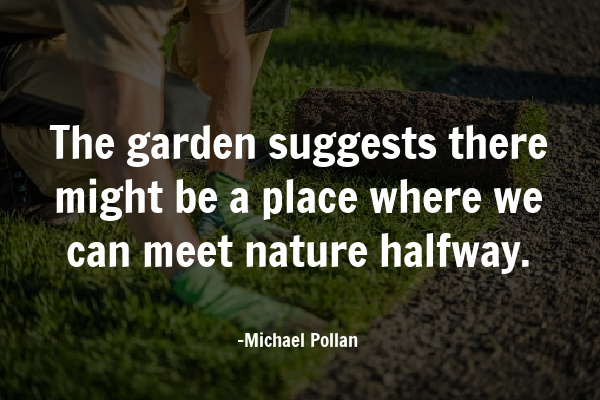 Quote about benefits of a backyard garden