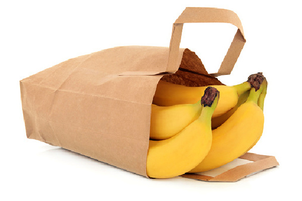 Banana fruit in a brown paper recycled grocery bag over white background
