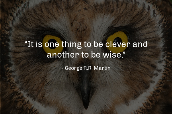 """""""It is one thing to be clever and another to be wise."""" ― George R.R. Martin"""